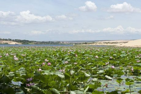 Kham pha Bau Trang - 'Sahara thu nho' cua Viet Nam - Anh 6