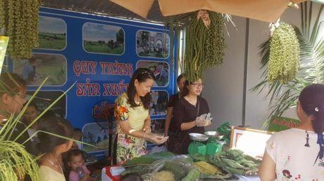 Ve Ha Noi tham lang com Me Tri dam net tinh hoa - Anh 1