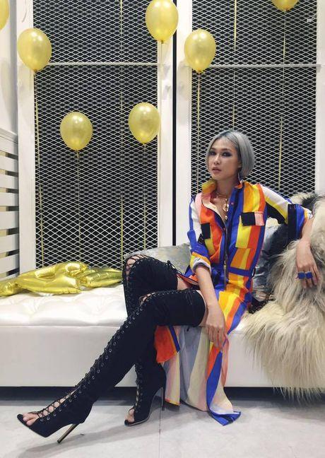 Co gi trong tu do Thu-Dong cua nhung nang fashionista Viet - Anh 10