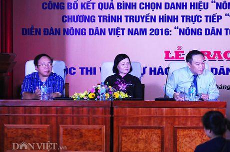 San sang cho ngay hoi lon cua nong dan Viet Nam - Anh 1