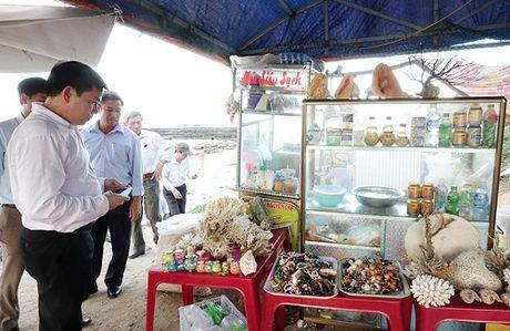 Quang Ngai: Nhung hinh anh nhech nhac tren dao Ly Son - Anh 6