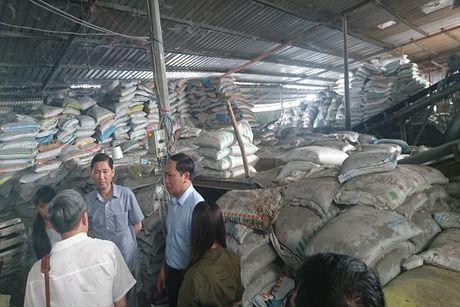 Pho chu tich Tran Vinh Tuyen: TPHCM nong tinh trang phan bon gia - Anh 1