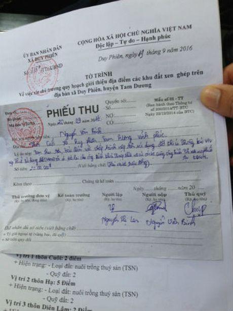 Tam Duong (Vinh Phuc): Tu y chuyen doi muc dich hang ngan met vuong dat - Anh 1