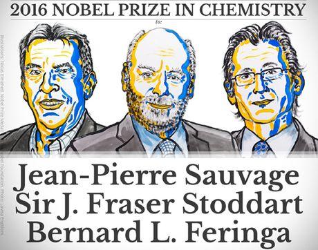 Giai Nobel Hoa hoc 2016 thuoc ve ba nha khoa hoc che tao may phan tu - Anh 1