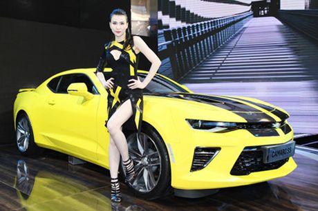 Rung chan dai goi cam tai Vietnam Motor Show 2016 - Anh 5