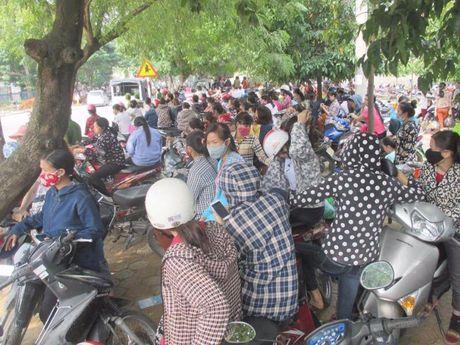 Nghe An: Hon 2.500 cong nhan ngung viec doi quyen loi - Anh 1