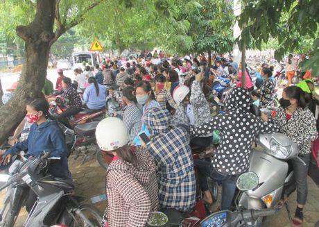 Nghe An: Hon 2.500 cong nhan ngung viec doi quyen loi - Anh 2