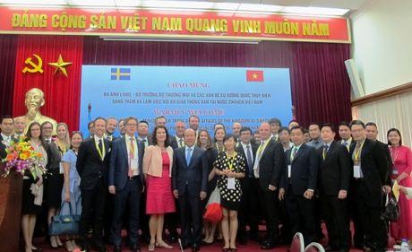 Day manh hop tac toan dien Viet Nam-Thuy Dien linh vuc GTVT - Anh 2