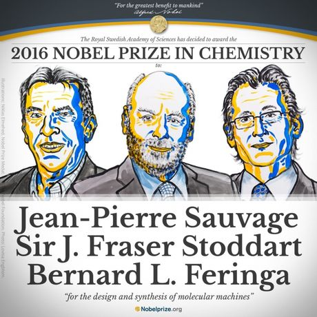 Nobel Hoa hoc 2016: Co may sieu nho - Anh 1