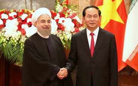 Tuyen bo chung Viet Nam-Iran - Anh 1