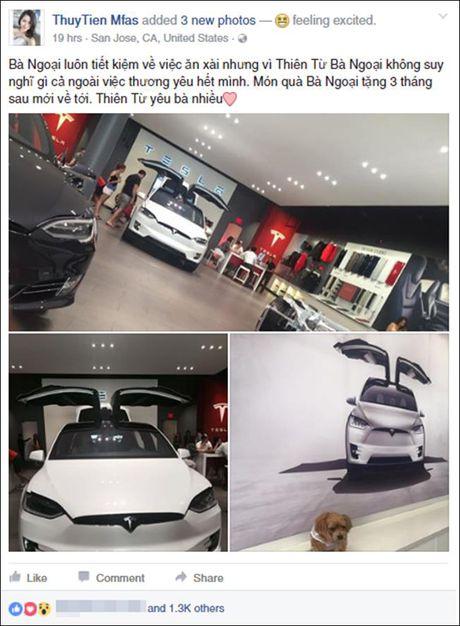 Vo Dan Truong 'show hang' sieu xe dien Tesla tien ty - Anh 2