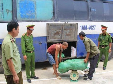 Thanh Hoa: Bat xe khach van chuyen noi tang, bi lon thoi di tieu thu - Anh 1