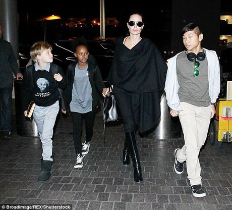 'Tach' khoi Brad Pitt, me con Angelina Jolie phai tri lieu tam ly - Anh 2