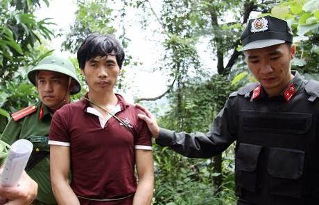 Nhung vu tham sat rung dong du luan Viet Nam - Anh 3