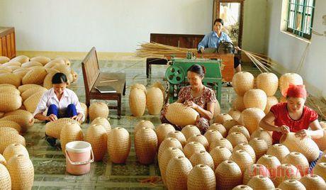 Tinh Nghe An tham gia hoat dong 'Ket noi cung - cau' tai Da Nang - Anh 1