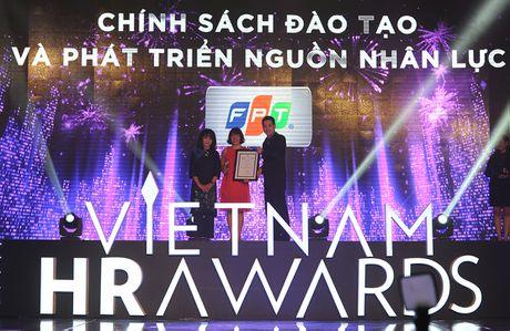 FPT lan thu 2 lien tiep gianh 'cu dup' tai Vietnam HR Awards - Anh 1
