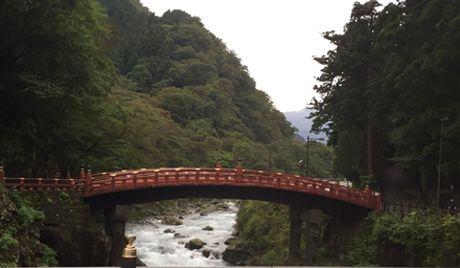 Ve dep trang le cua quan the den chua Nikko Toshogu - Anh 4