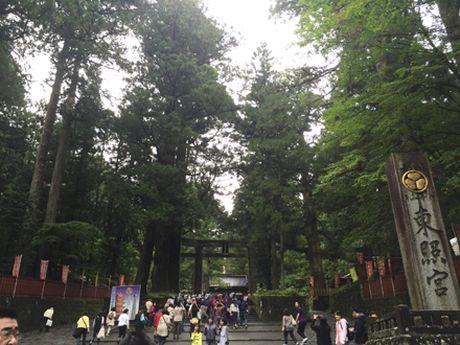 Ve dep trang le cua quan the den chua Nikko Toshogu - Anh 6