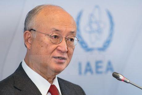 IAEA nhan dinh thoa thuan hat nhan Iran van con mong manh - Anh 1