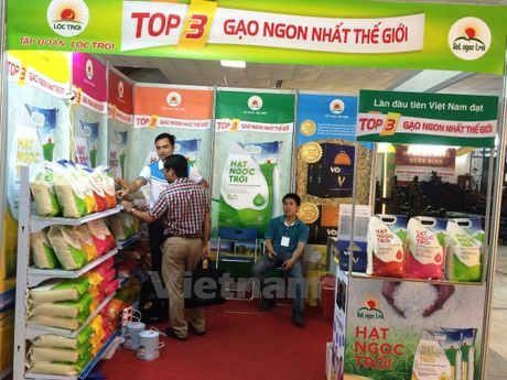 Chon giong lua thuong hieu quoc gia de tim ra gao Viet ngon - Anh 1