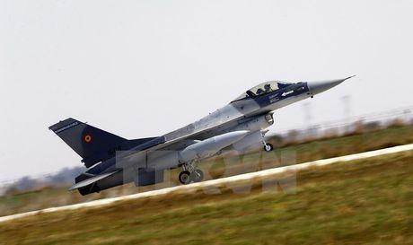 Romania nhan 6 may bay tiem kich F-16 tu Bo Dao Nha - Anh 1
