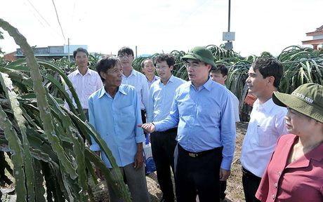 Chu tich MTTQ Viet Nam lam viec voi tinh Binh Thuan - Anh 3