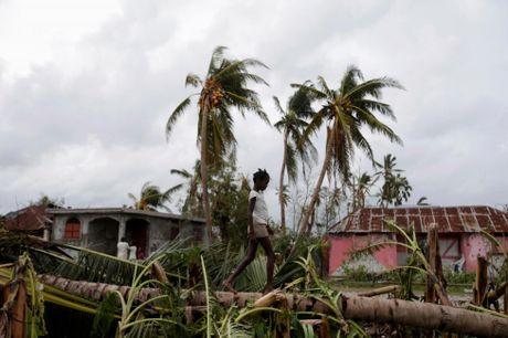 Chum anh Haiti tan hoang sau sieu bao Matthew - Anh 10