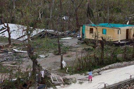 Chum anh Haiti tan hoang sau sieu bao Matthew - Anh 13