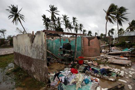 Chum anh Haiti tan hoang sau sieu bao Matthew - Anh 6