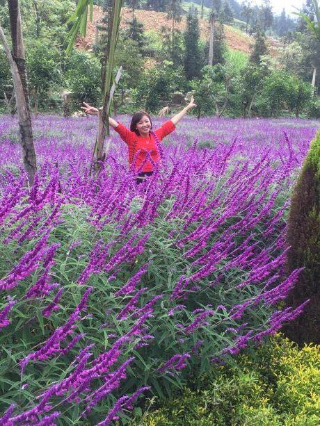 Ngan ngo truoc mua hoa oai huong o thung lung Bac Ha - Anh 6