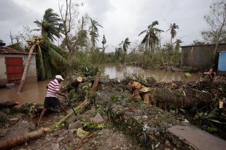 Haiti tan hoang sau bao Matthew, da co it nhat 339 nguoi thiet mang - Anh 16