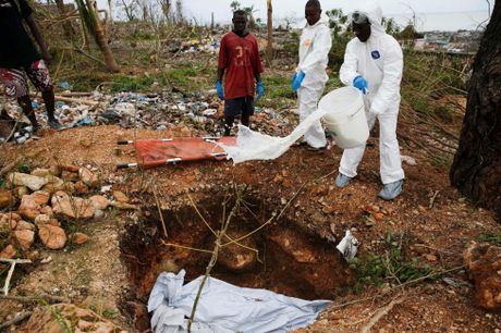 Haiti tan hoang sau bao Matthew, da co it nhat 339 nguoi thiet mang - Anh 7