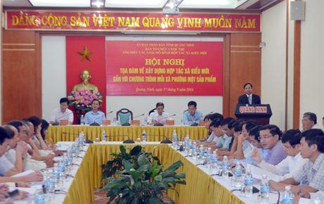 Quang Ninh phat trien nhieu hop tac xa kieu moi - Anh 1
