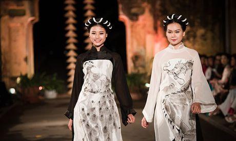 Dan nguoi dep HHVN 2016 hoi ngo o Festival Ao dai 2016 - Anh 10