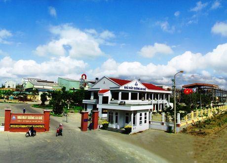 Nang cong suat nha may duong An Khe len 18.000 tan mia/ngay - Anh 1