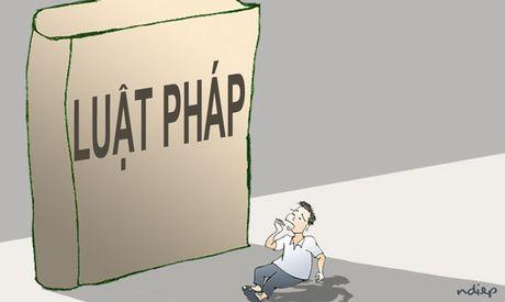 Trinh Xuan Thanh, 'anh o noi nao' va 'luoi gioi long long'! - Anh 1