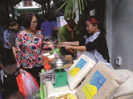 Gao bon thang dang chay hang - Anh 1