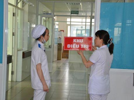 Viet Nam phat hien them 2 truong hop moi nhiem virus Zika - Anh 1