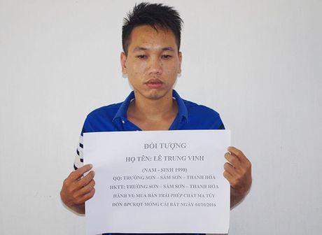 Quang Ninh: Ngan chan hang loat vu van chuyen ma tuy da va vu khi qua bien gioi - Anh 1