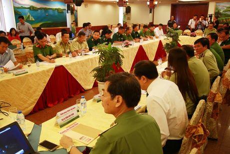 TP.HCM trien khai ke hoach chong buon lau thuoc la - Anh 3