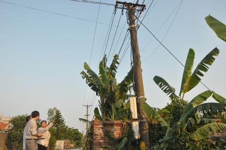 Quang Ninh: Cong nhan dien luc tu vong khi lap dat, sua chua duong day ha the - Anh 1