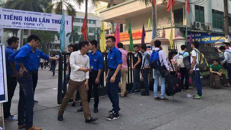 Rong ran xep hang cho thi tieng Han - Anh 2