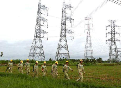 Yeu cau dung ngay Dai Vinh danh cong trinh 500 kV - Anh 2