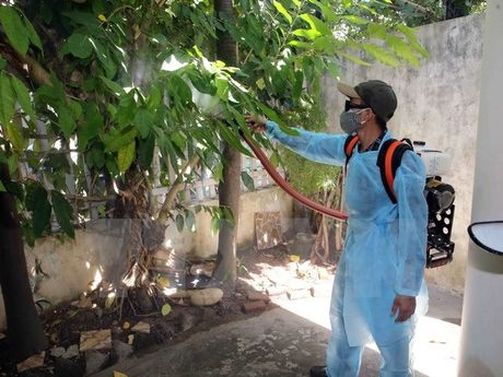 TP.HCM khan truong dieu tra dich te khu vuc benh nhan nhiem Zika - Anh 1