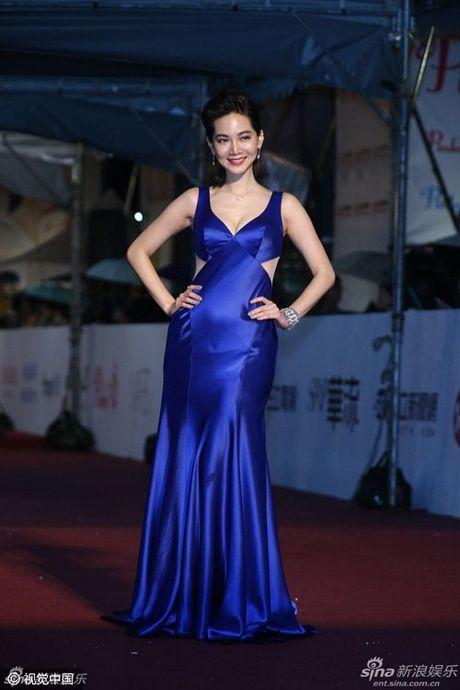 My nhan dep 'nghieng thanh' tren tham do Oscar xu Dai - Anh 13