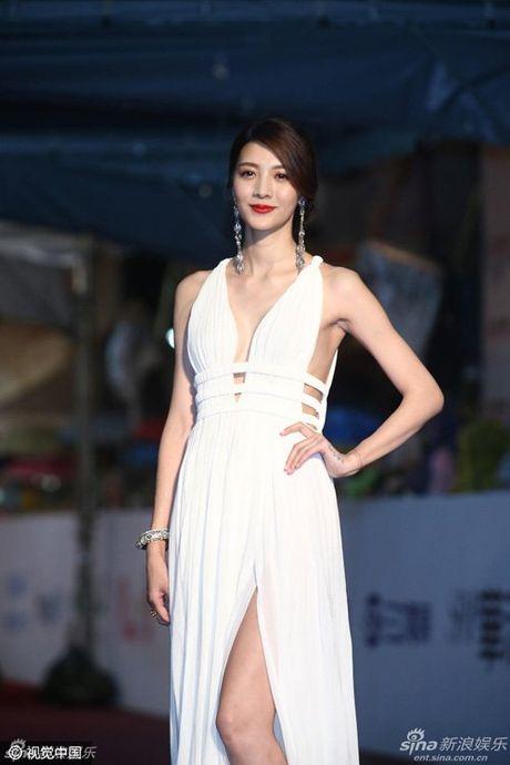 My nhan dep 'nghieng thanh' tren tham do Oscar xu Dai - Anh 14