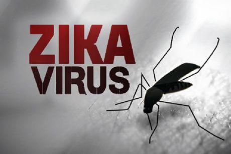 Bo Y te ghi nhan 2 truong hop moi nhiem virus Zika - Anh 2