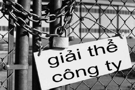 Thu tuc tam ngung hoac giai the cong ty TNHH mot thanh vien - Anh 1