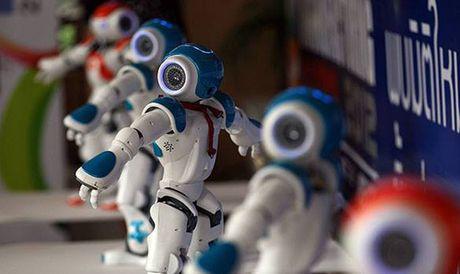 Robot cho phu nu khong con - Anh 1