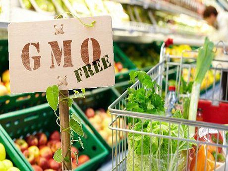 Vi sao nguoi tieu dung lo ngai ve GMO? - Anh 2